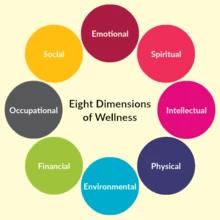 Wellness Vision