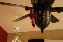 Christmas Tree Farm 008