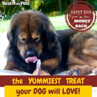 Best Natural Bully Sticks from Best for My Pets {Review}