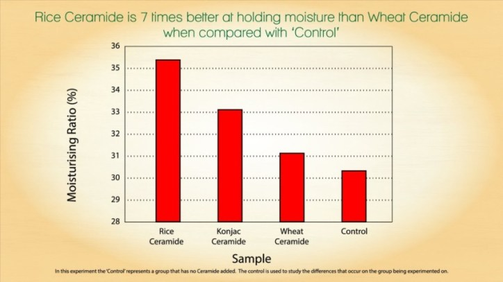 Comparing phytoceramides skin therapy made with rice vs. wheat and other products
