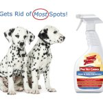 Pet Stain Remover and Odor Eliminator by Pro Vet Choice
