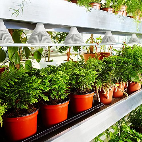 LED Plant Grow light 1