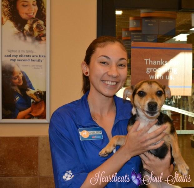 Lehua & Chelsea PetSmart Grooming 2