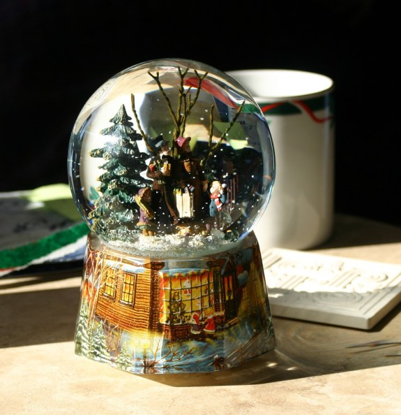 How to Build a North Pole Terrarium