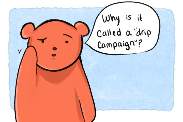 why is it called an email drip campaign cartoon bear questioning
