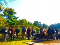 川崎 生田緑地ばら苑13
