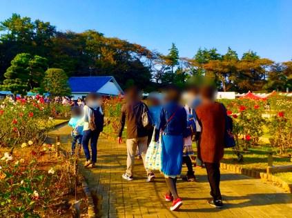 川崎 生田緑地ばら苑12