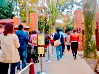 紅葉旧古河庭園〜ライトアップ六義園13