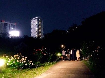 満月東京タワー04