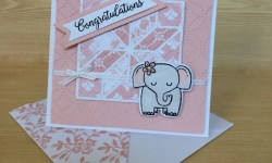 Stampin Up A Little Wild Baby Card - Rosanne Mulhern