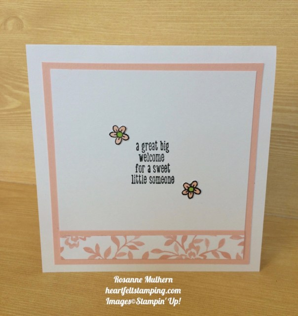 Stampin Up A Little Wild Baby Cards Ideas- Rosanne Mulhern