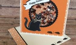 Stampin Up Spooky Cat Halloween Shaker Card - Rosanne Mulhern