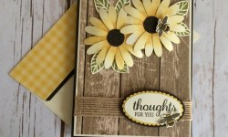 Stampin Up Daisy Delight Thinking of You Card Ideas - Rosanne Mulhern