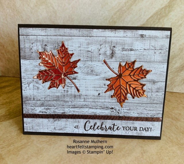 Stampin Up Colorful Seasons Masculine Birthday Card Idea - Rosanne Mulhern stampinup