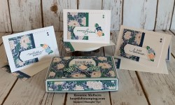 Stampin Up Lovely You Note Cards Gift Set- Rosanne Mulhern stampinup