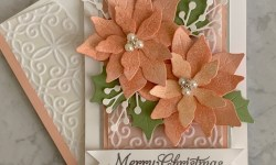 Stampin' Up! Poinsettia Petals Christmas Card Idea - Rosanne Mulhern stampinup