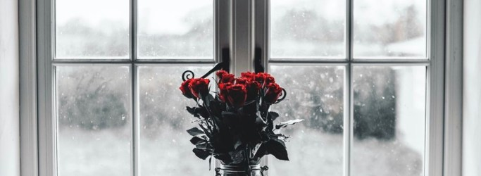 Image of a rose bunch, used on blog about dating fatigue