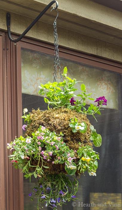 Water Garden Plant Baskets