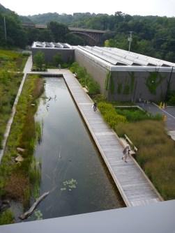 Phipps conservatory lagoon