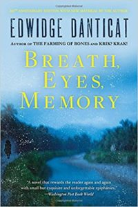 Breath Eyes Memory Book Cover Image