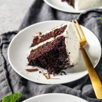 Vegan Mint Chocolate Chip Cake