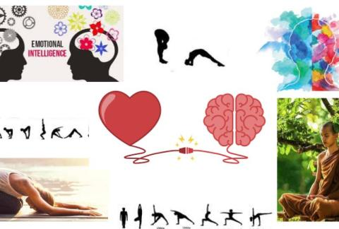 #yoga#meditation#intelligence emotionelle