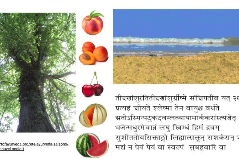 régime-été-Ayurveda-saisons-que manger, que faire