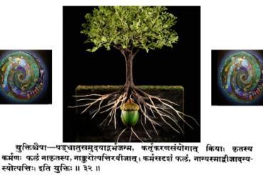 Médecine personnalisée dans l'Ayurveda.