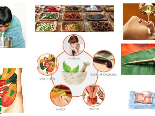 panchakarma-biopurification-detox