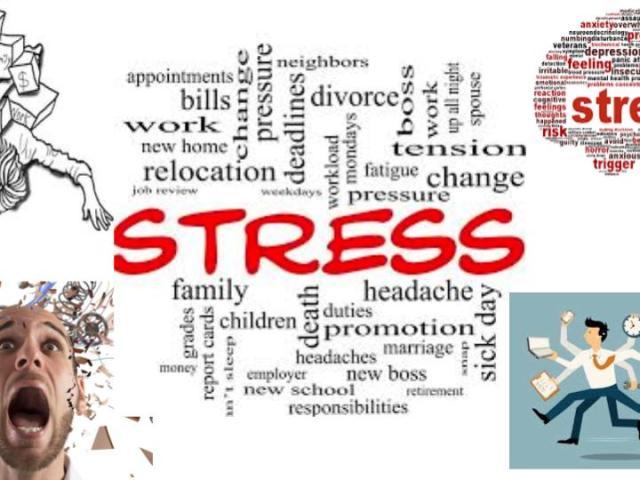 Stress-ayurveda agni bala heartofayurveda paris