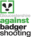 Gloucestershire Against Badger Shooting
