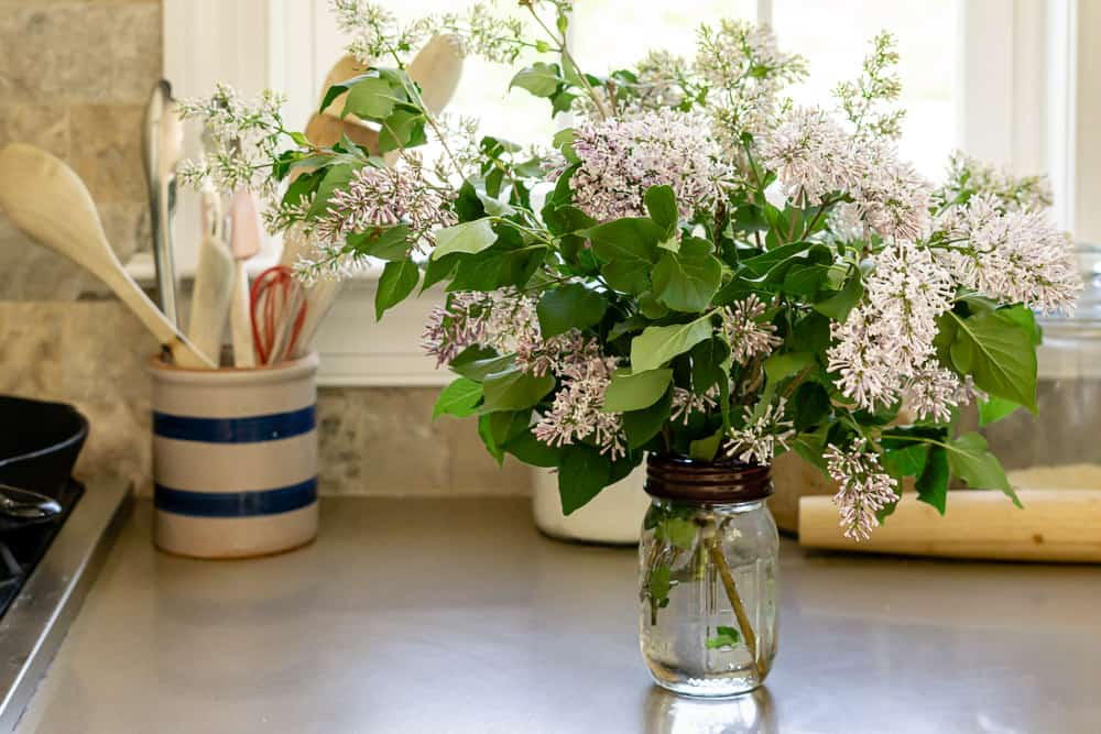 lilacs on counter help with slow decorated kitchen