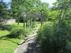 garden (Large)