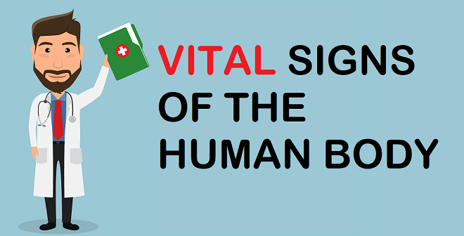 Vital Signs Of The Human Body – What Should You Know?