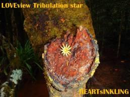 starTRIBULATION