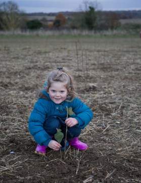 20161127-heartwood-planting-36-of-36