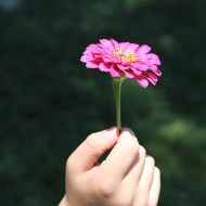 The Subtle Power of Mindful Self Compassion, Part 2