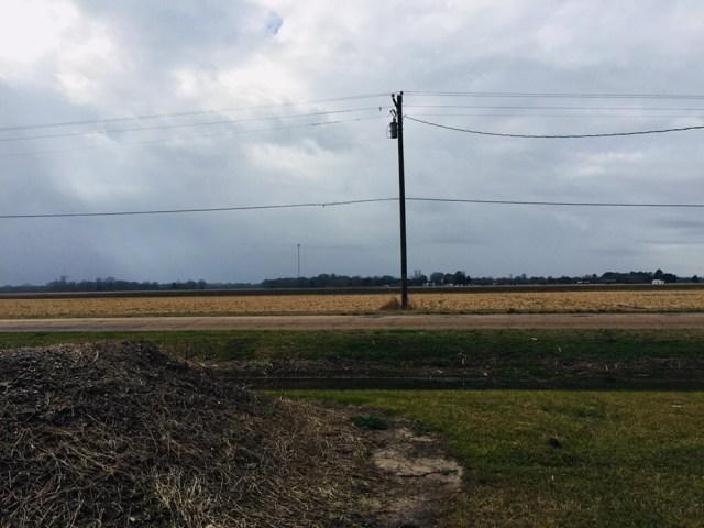 Field across the street from Schexnayder Racing