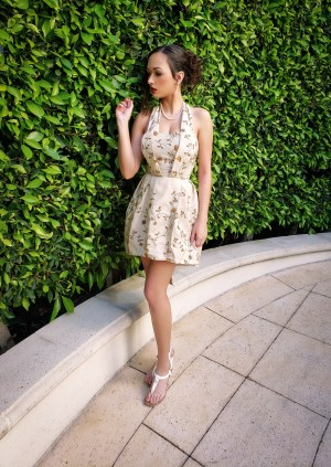 Fashion Design by Heather Spears Beverly Hills Tea Dress Portfolio