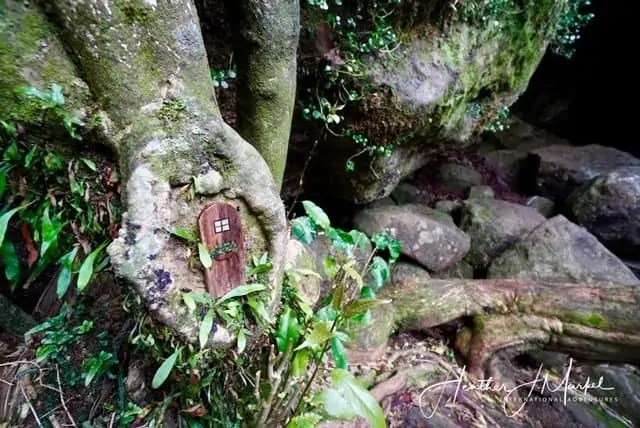 fairy door at Wareire Waterfall