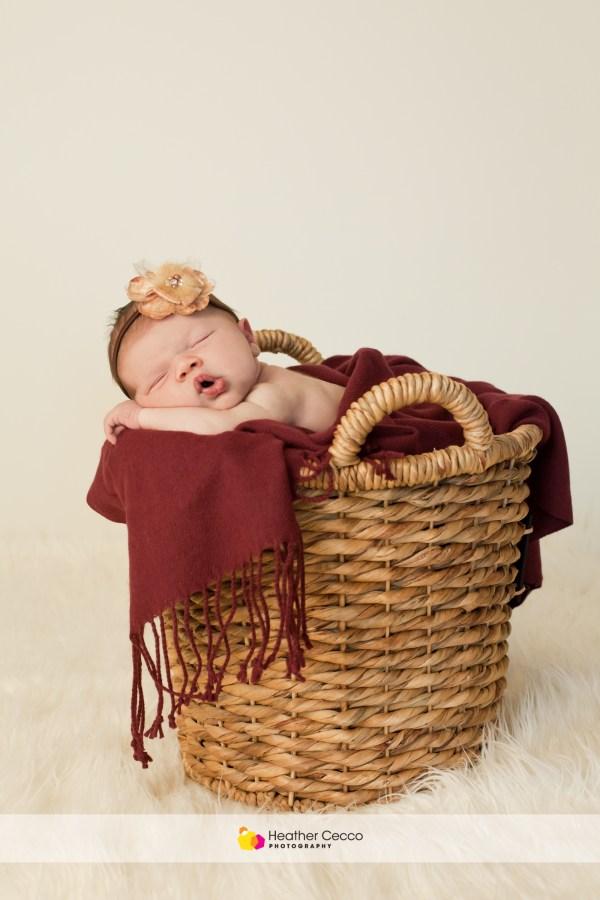 Newborn Malvern 1 (3)