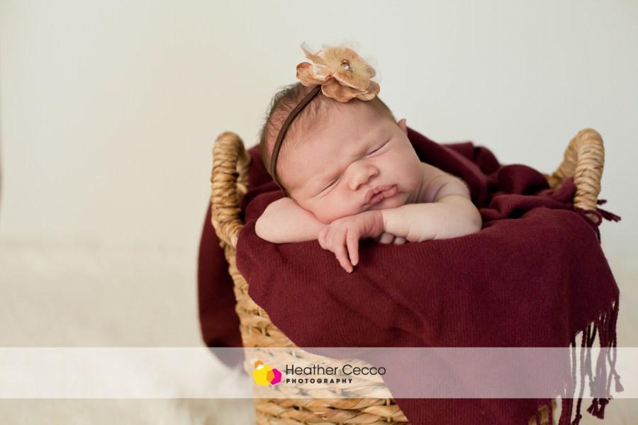 Newborn Malvern 1 (4)