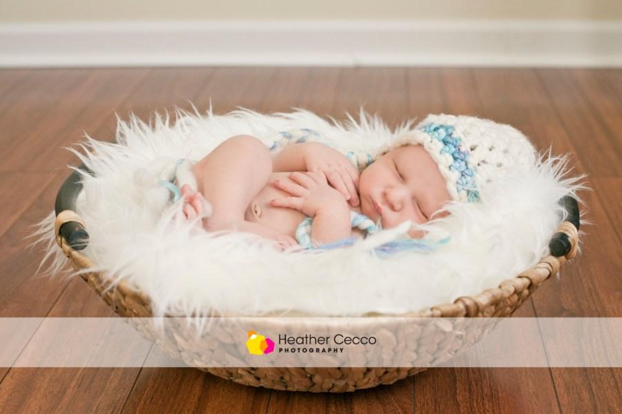 Newborn Malvern 1