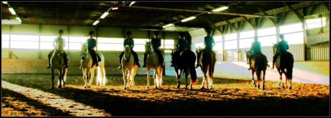 Grelo Farm 5