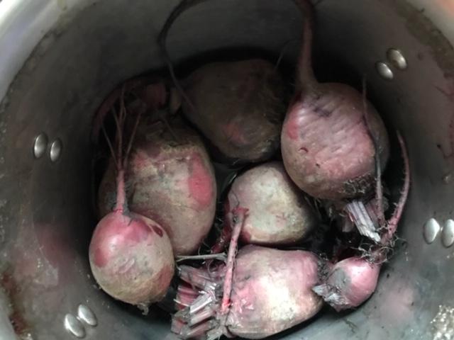 How do you freeze beets? #HeatherEarles #herbnwisdom #naturalliving #superfoods #beets #foodprep