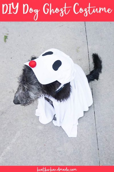 diy dog ghost costume