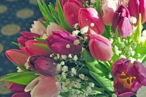 Tulip bouquet with vintage treatment