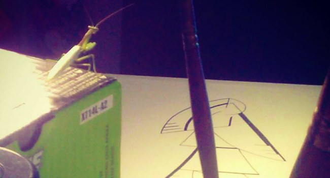 Grasshopper watching Heather draw.