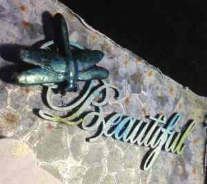 beautiful dragonfly 1