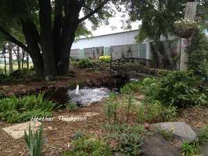 gardens 2013 5